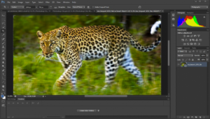 telecharger photoshop cs6